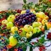 Славный урожай- славный праздник