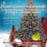 НОВОГОДНИЙ КАРНАВАЛ с Дедом Морозом ми Снегурочкой в страну королевы сказок!
