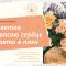 Виртуальная выставка цветов «Цветов красою сердце взято в плен»